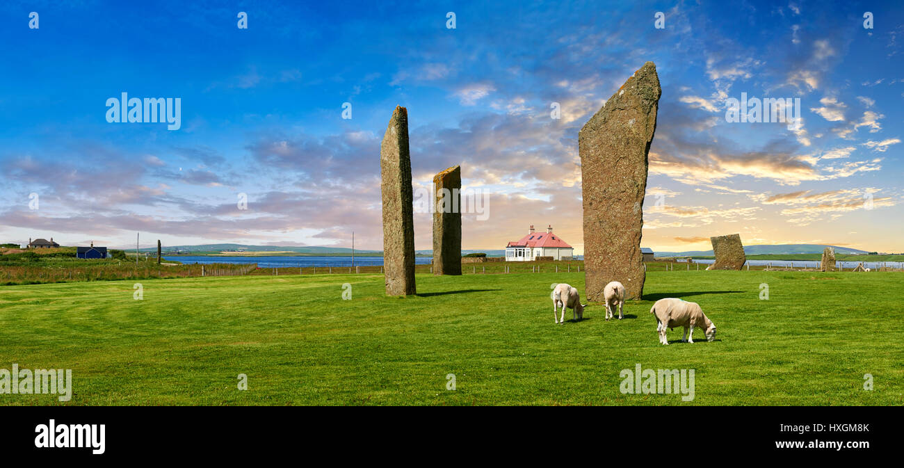 Neolithic Standing Stones of Stenness, Isle of Orkney, Scotland - Stock Image
