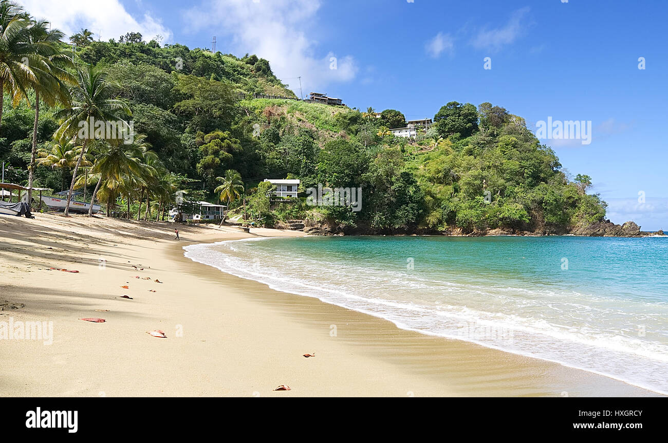 Republic of Trinidad and Tobago - Tobago island - Parlatuvier bay - Tropical beach of Caribbean sea - Stock Image