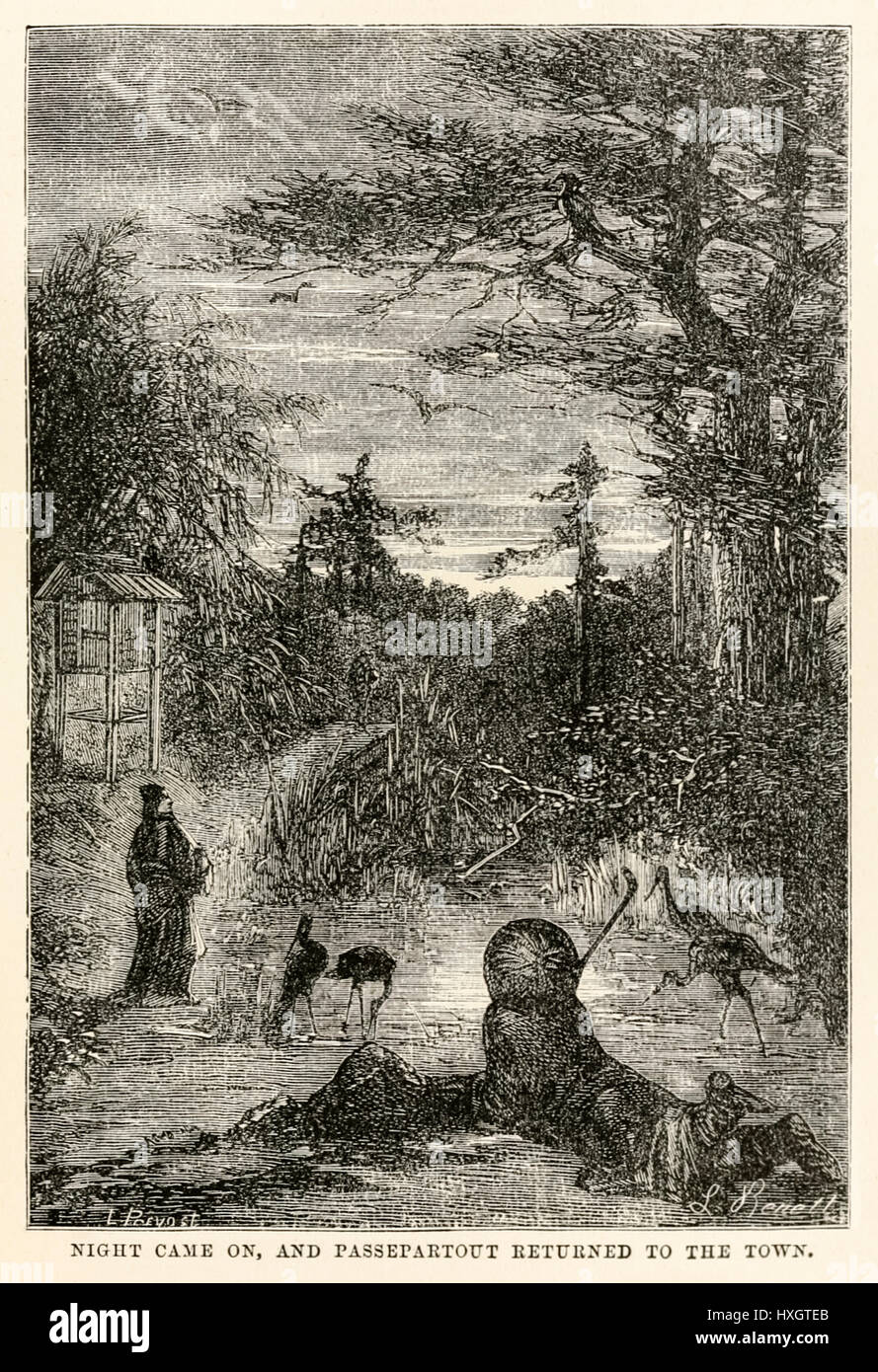 """""""Night came on, and Pasepartout returned to the town."""" from 'Around the World in Eighty Days' by Jules Verne (1828 - Stock Image"""