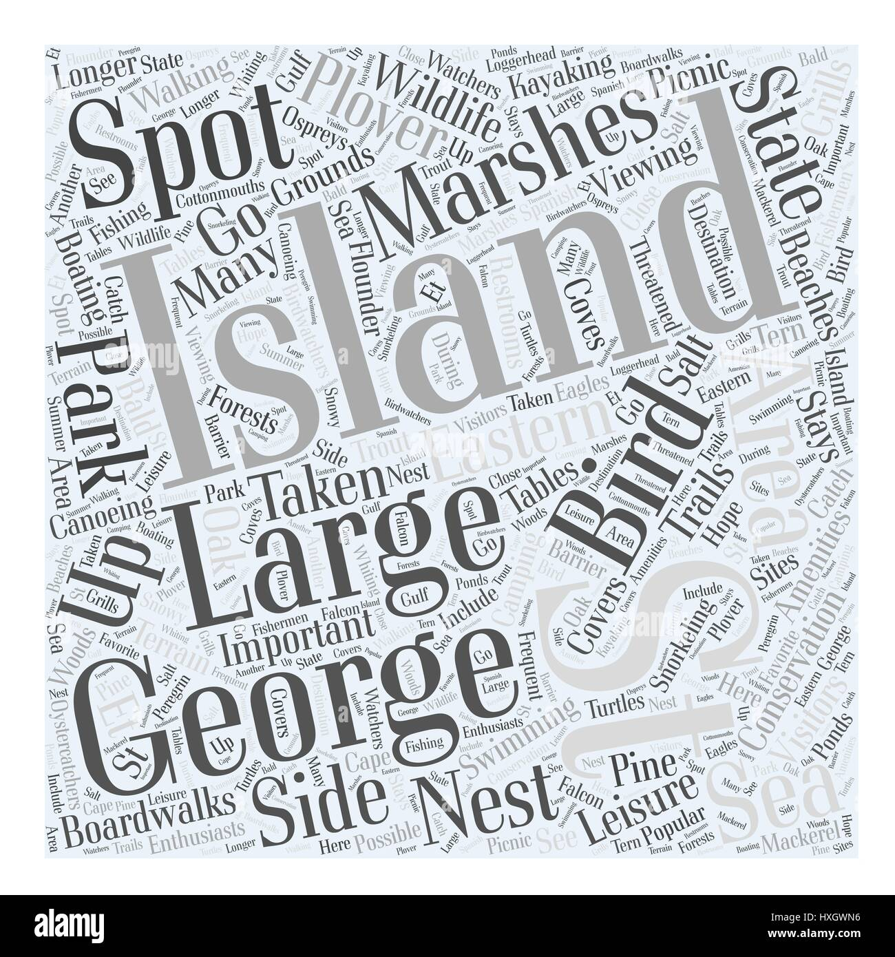 st george island Word Cloud Concept - Stock Vector