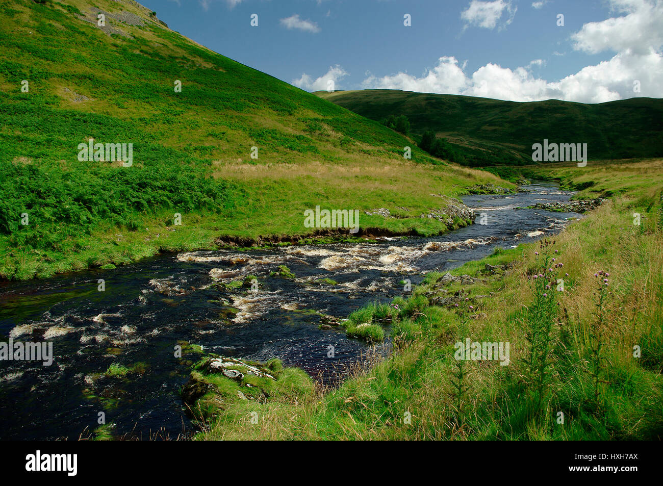 Coquetdale Valley, Northumberland, - Stock Image