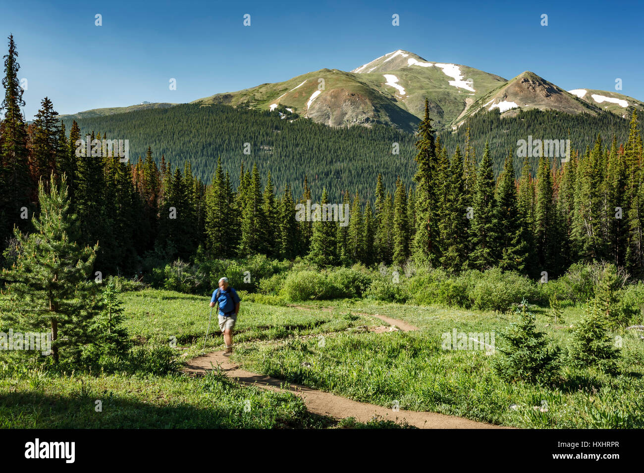 Hiker on Herman Gulch Trail, Arapaho National Forest, Colorado USA - Stock Image