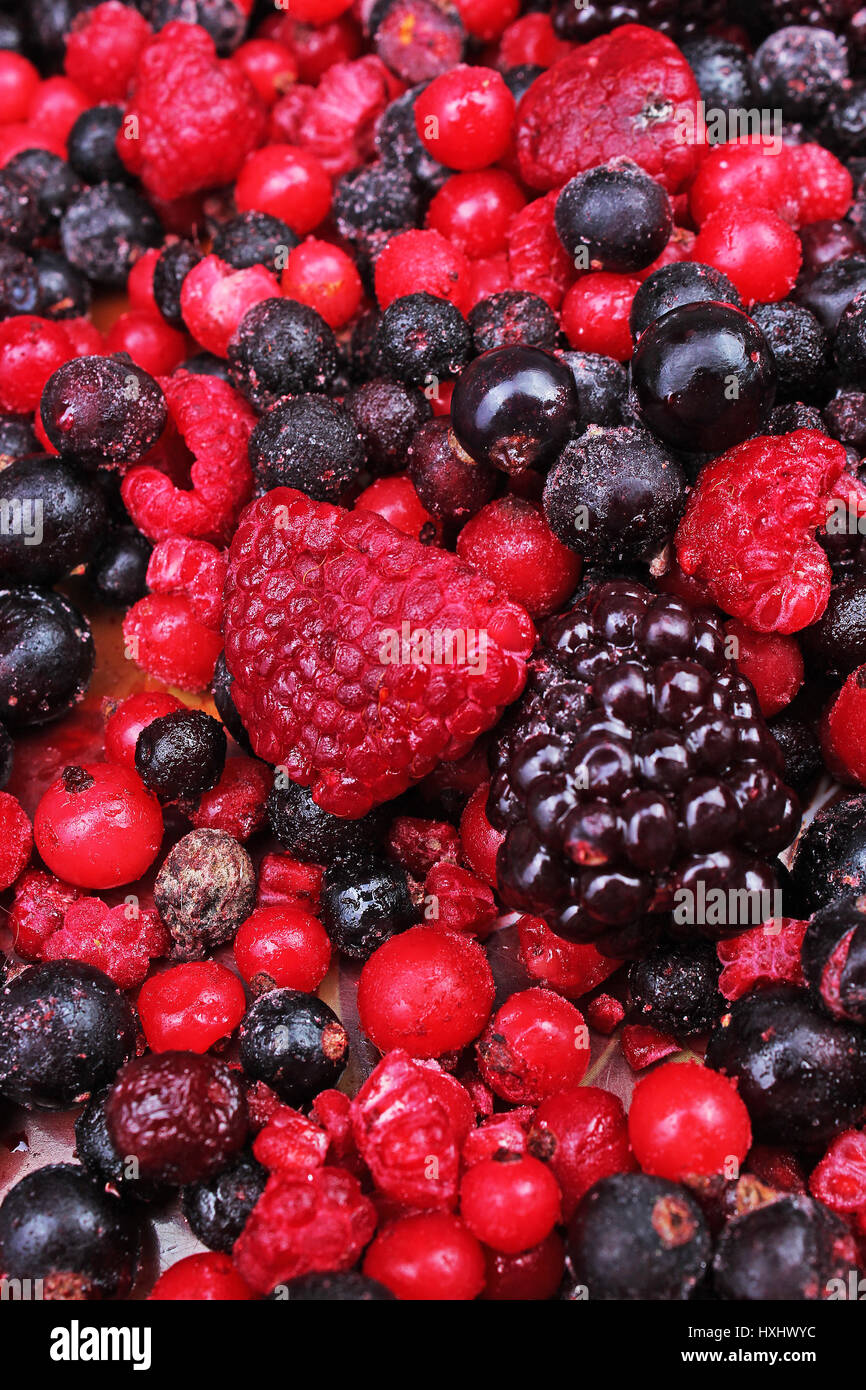Frozen mixed berries as background. Blueberries,raspberries black berries and currant mulberry texture pattern. - Stock Image