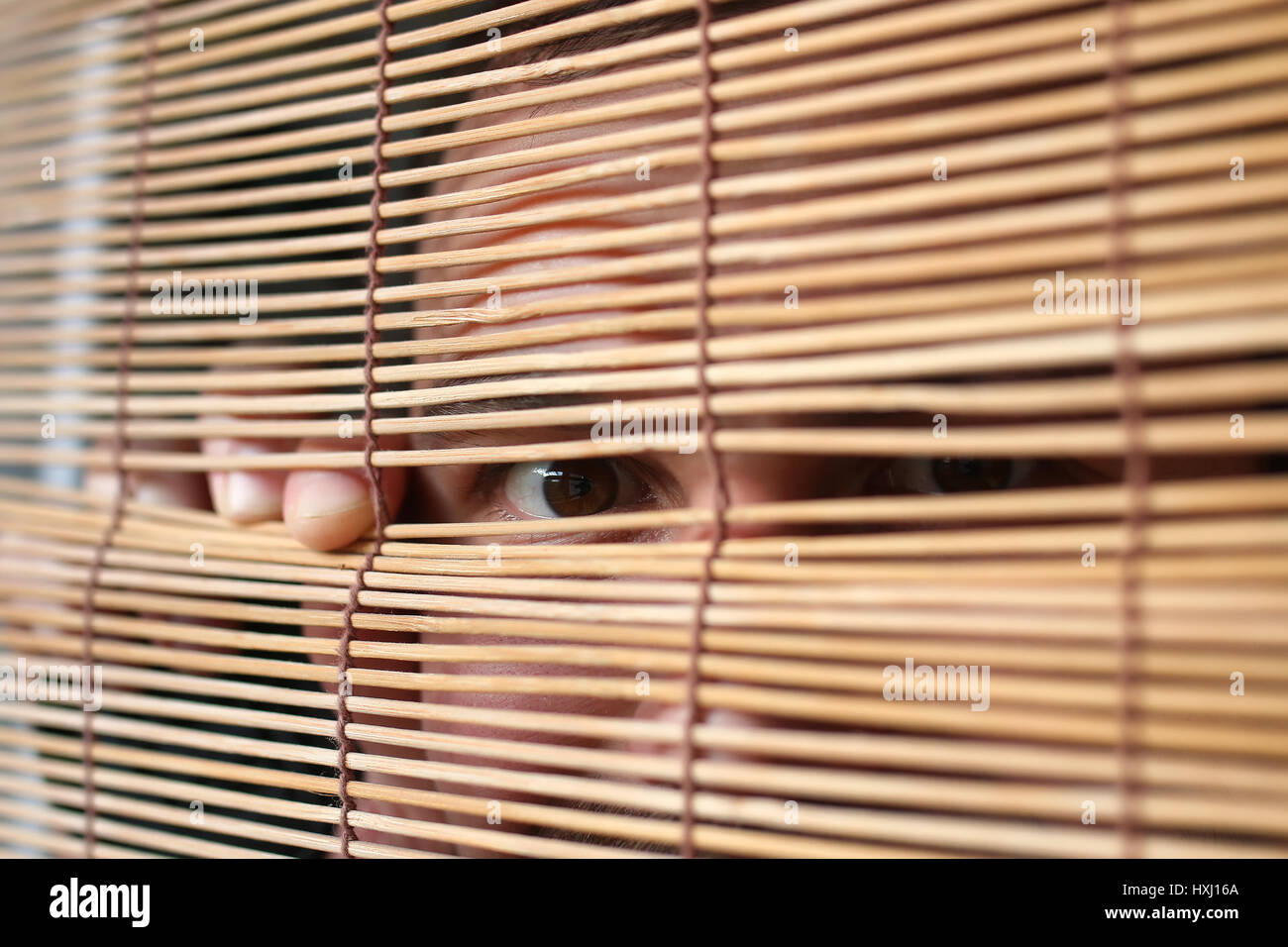 eyes looking through the blinds - Stock Image