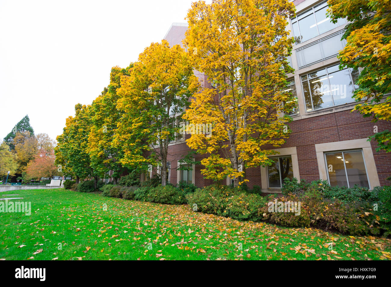 University of Oregon with Fall foliage as the leaves on the trees ...
