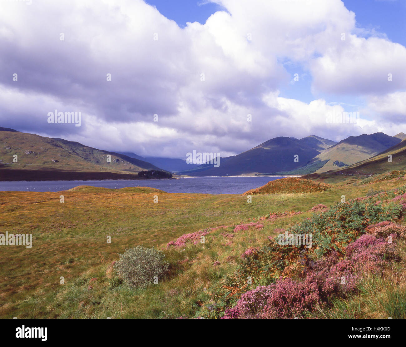 Loch Eilt, Lochaber District, Highland, Scotland, United Kingdom - Stock Image