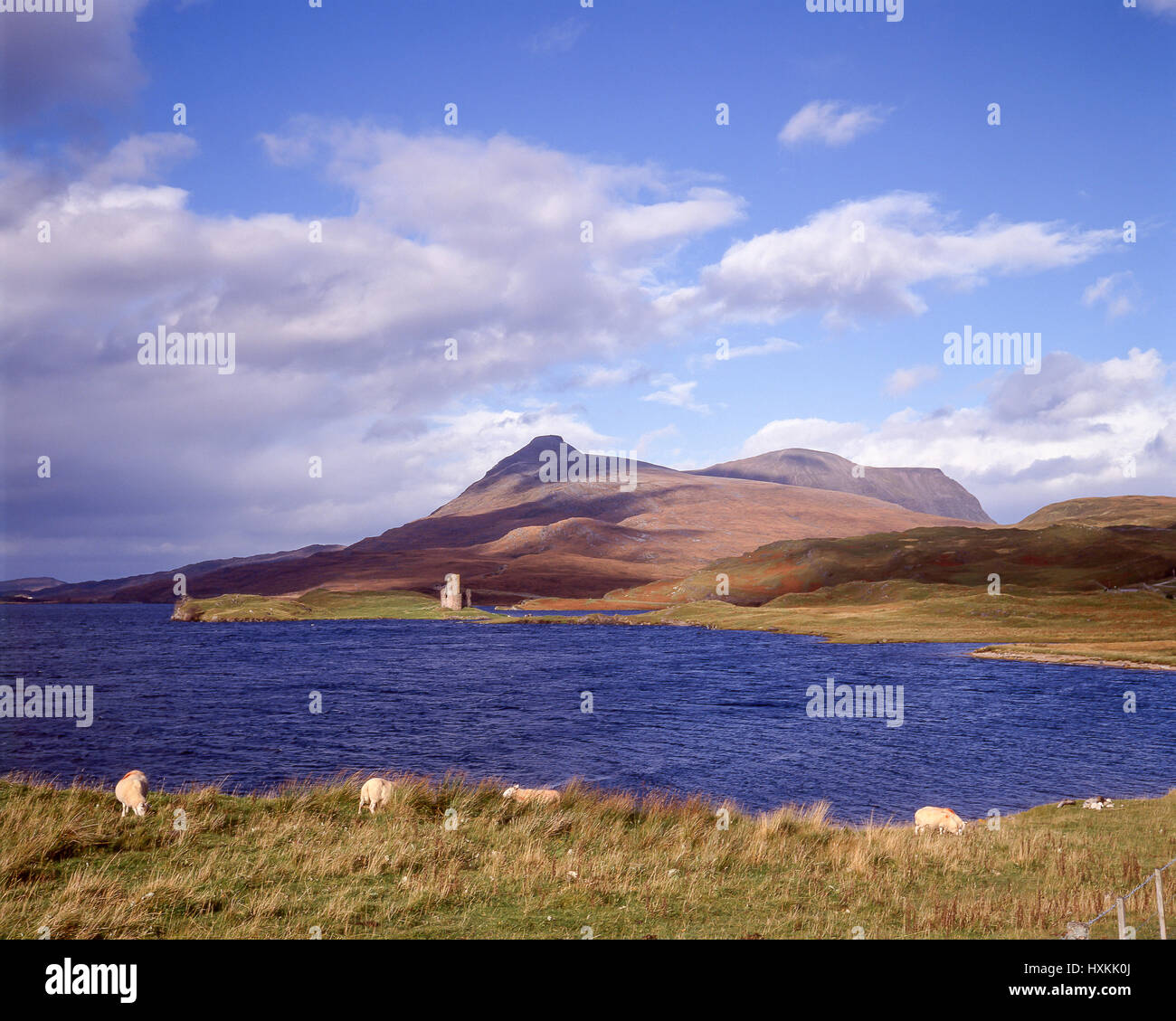 Loch Assynt showing Ardvreck Castle, Sutherland County, Highland, Scotland, United Kingdom - Stock Image