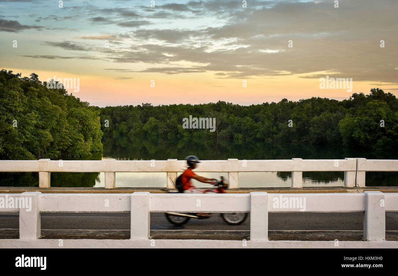 Motion blur of motorcyclist crossing a simple bridge over a still treelined river at sunset. - Stock Image