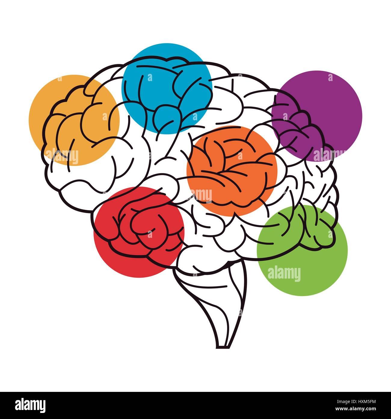 human brain process functions image - Stock Image