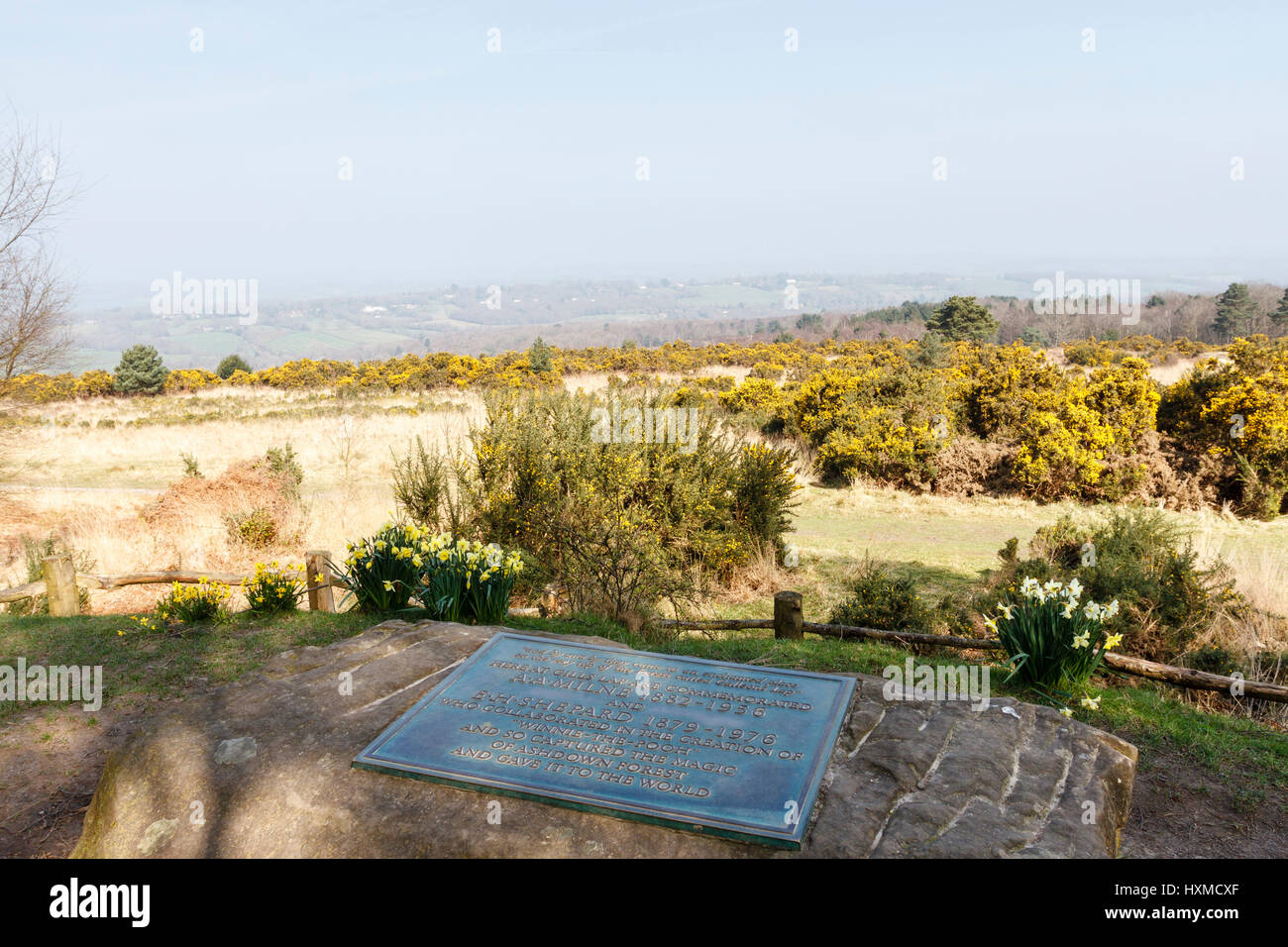 Commemoration plaque dedicated to AA Milne & EH Shepard, creators of Winnie the Pooh, Gils Lap,Ashdown Forest,East - Stock Image