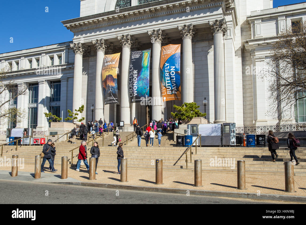 Tourists and visitors enter the Neo-classical National Museum of Natural History on the National Mall in Washington, - Stock Image