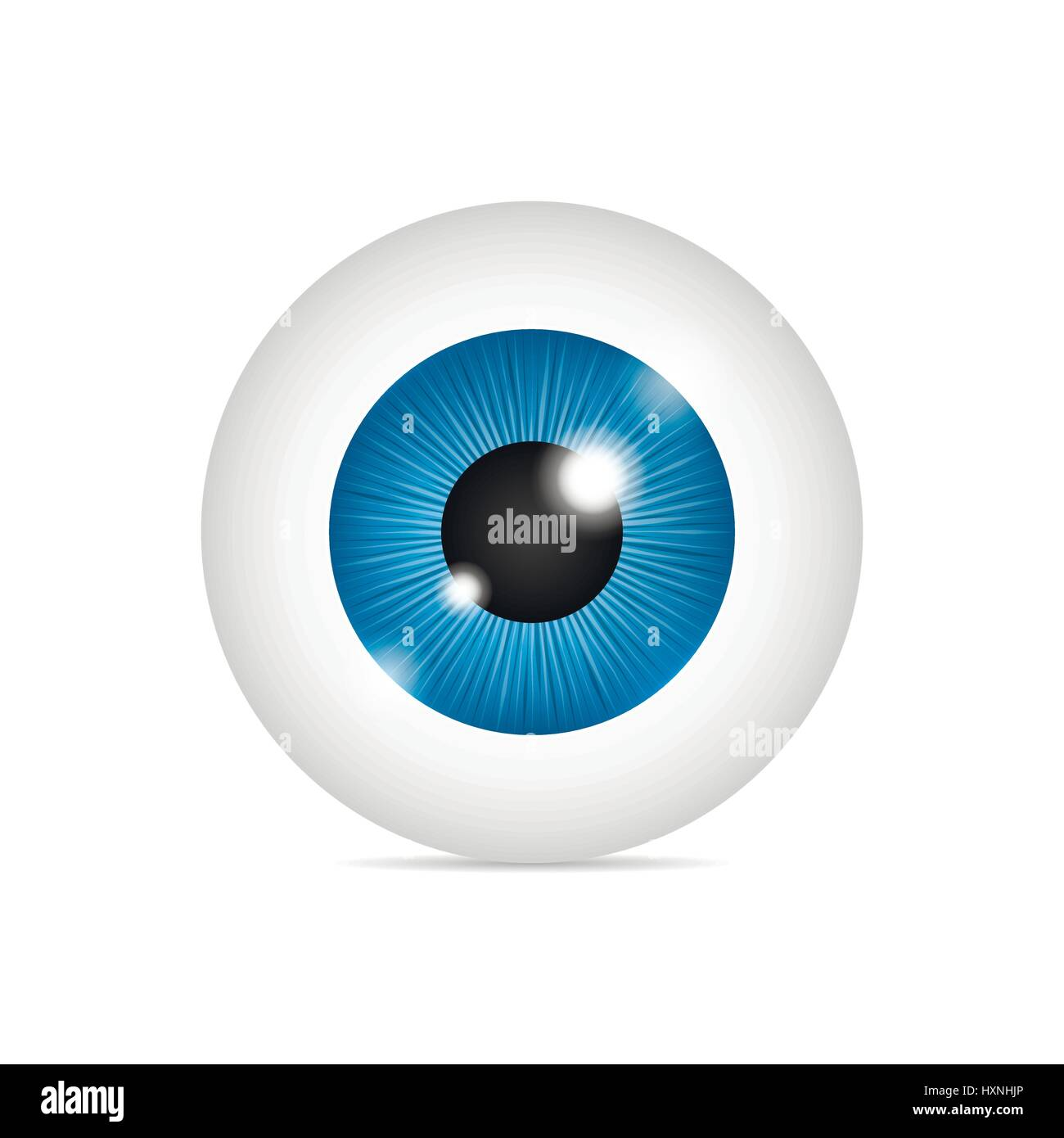 Realistic human eyeball - Stock Image