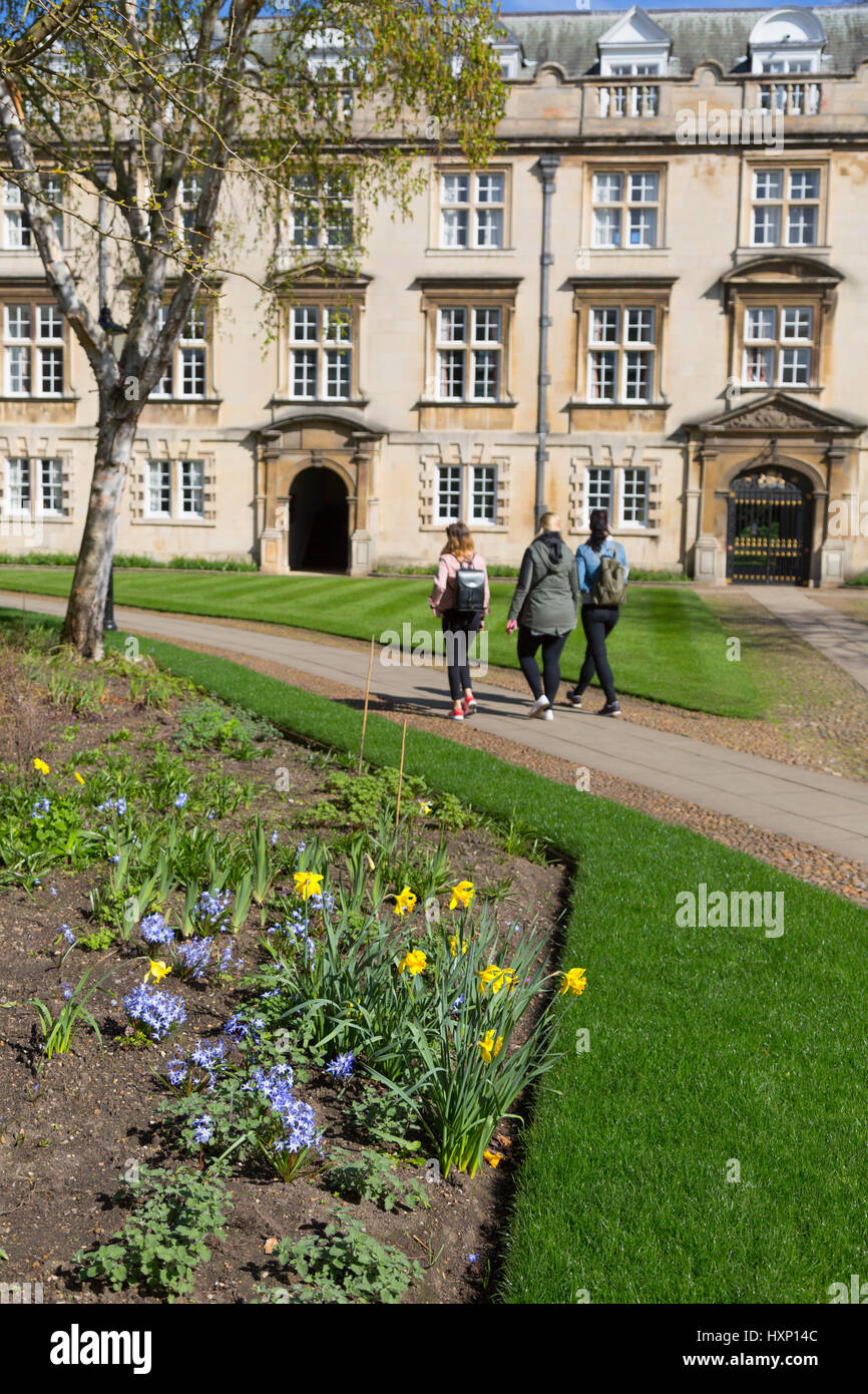 Cambridge University - Christs College in spring, Cambridge UK - Stock Image
