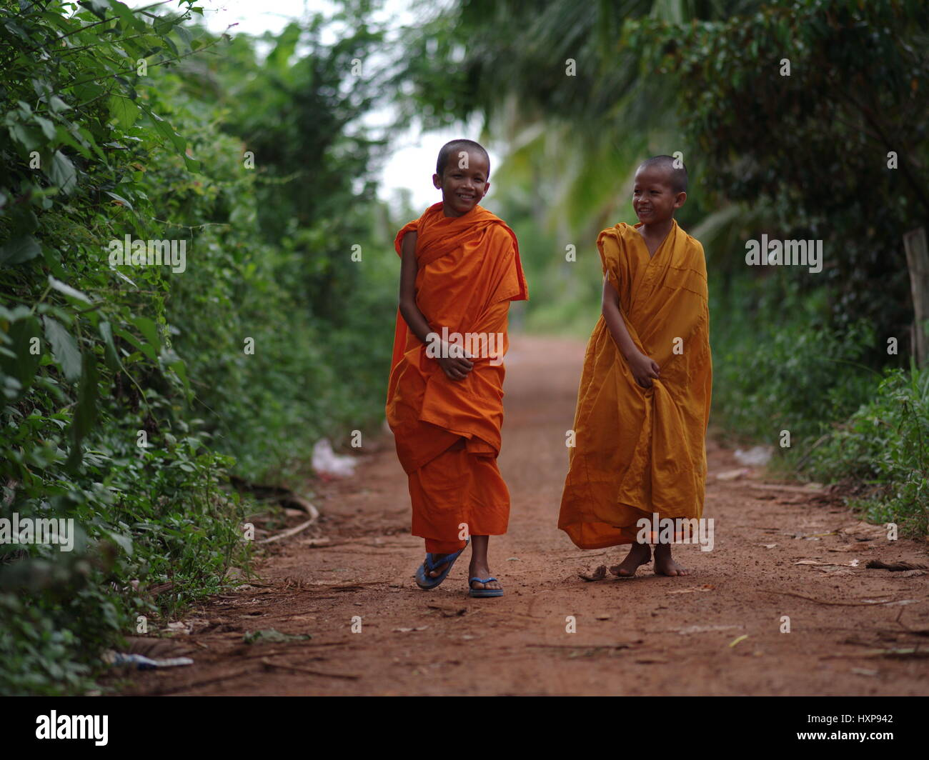 Monks on their way to Pagoda, South Cambodia.  Monks in Cambodia can range from very young boys to old men.  Many - Stock Image