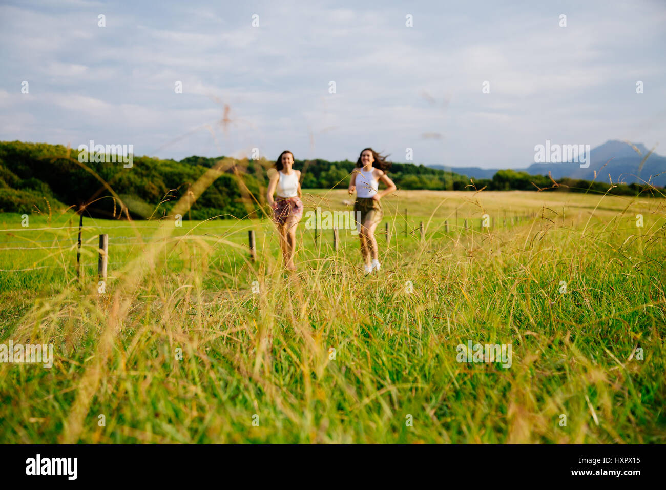 Funny female friends running in a meadow in summer. Focus on the grass, girls out of focus - Stock Image
