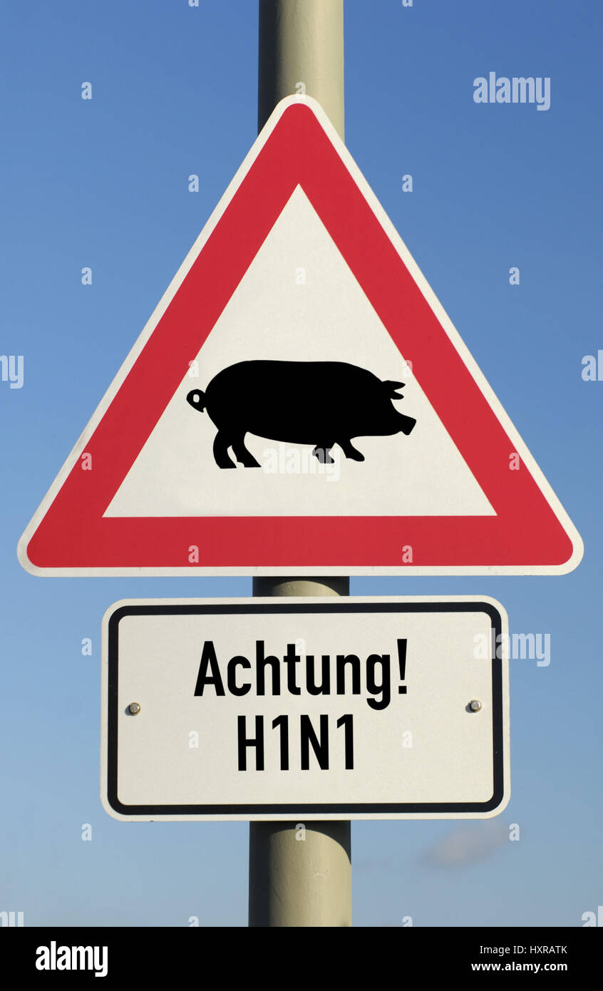 Traffic signs pork influenza (assembly), Verkehrszeichen Schweinegrippe (Montage) Stock Photo