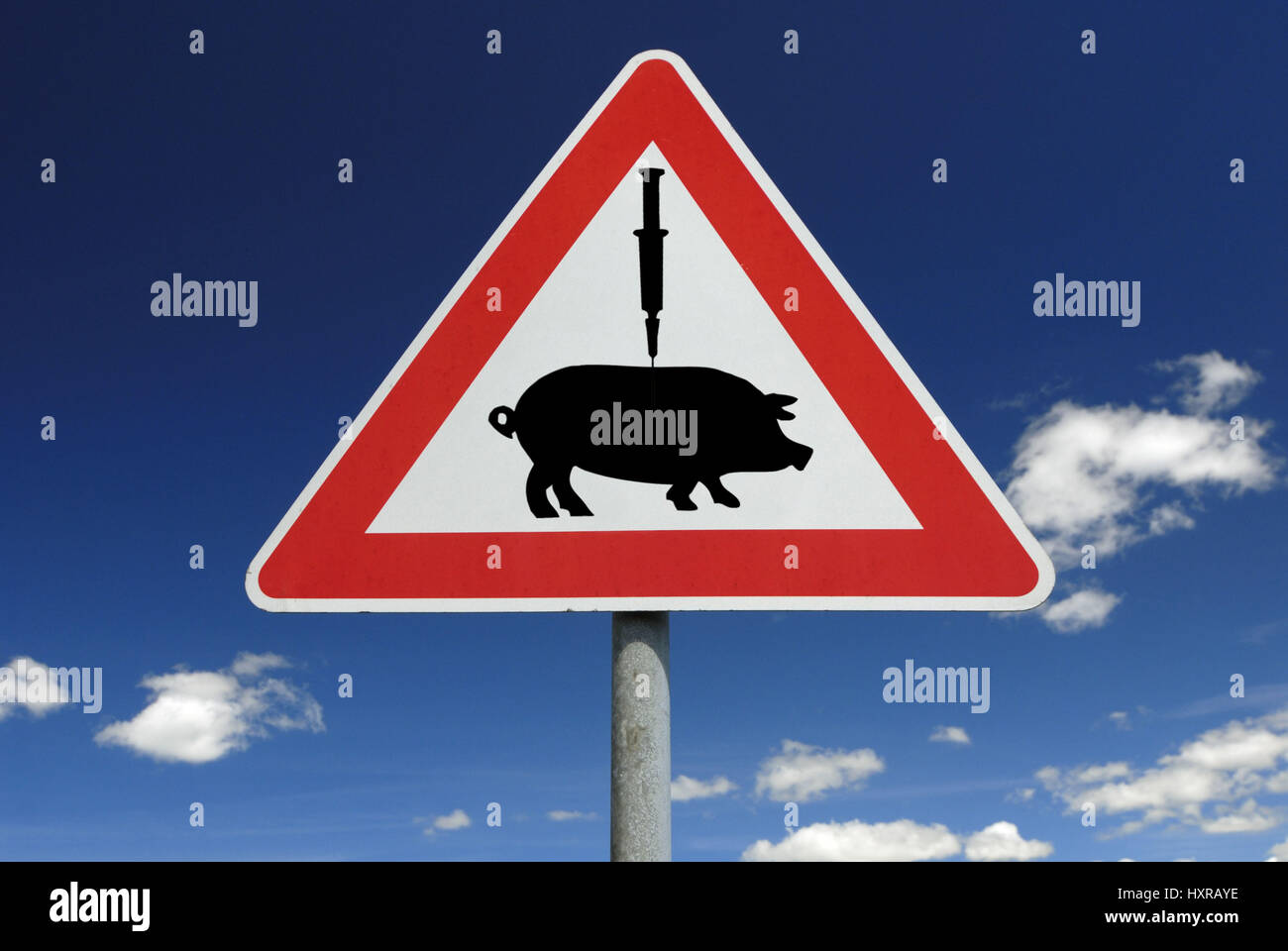 Traffic signs vaccination against pork influenza (assembly), Verkehrszeichen Impfung gegen Schweinegrippe (Montage) Stock Photo