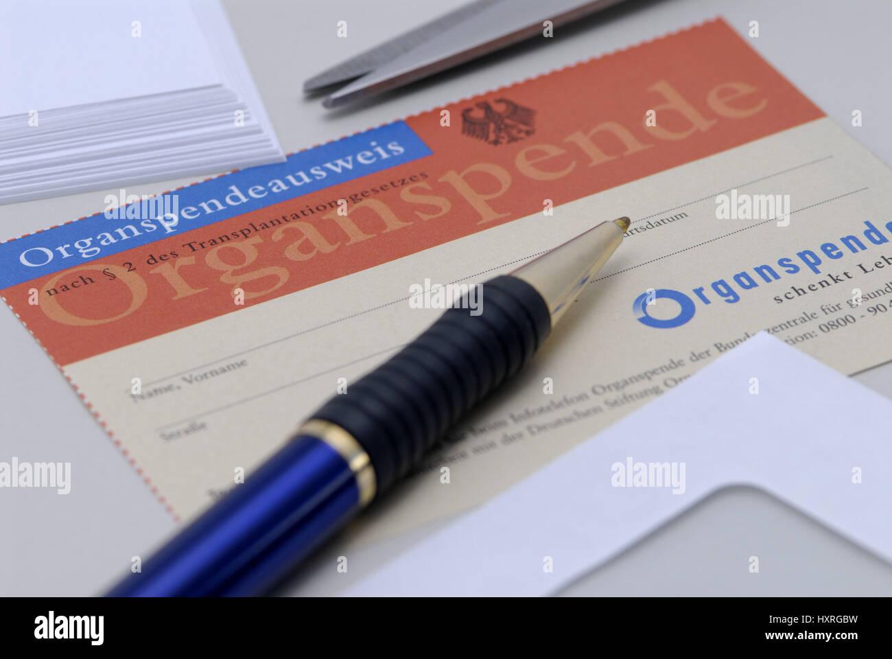 Organ donation, medicine, transplant, transplants, organ, organs, human, identity card, identity cards, organ donation - Stock Image