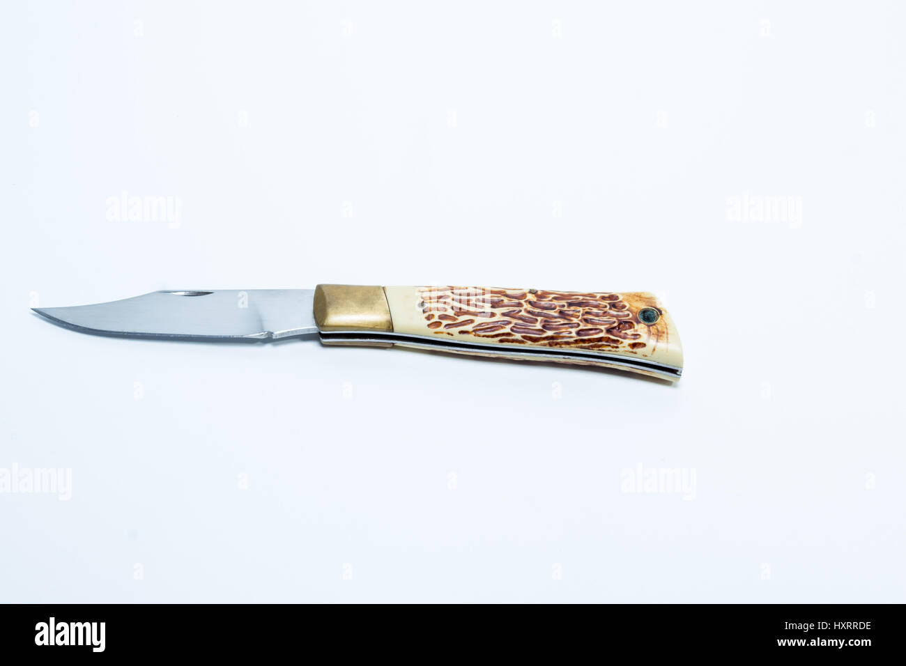 Vintage pocketknife with horn handle and brass guard - horizontal and white background - Stock Image