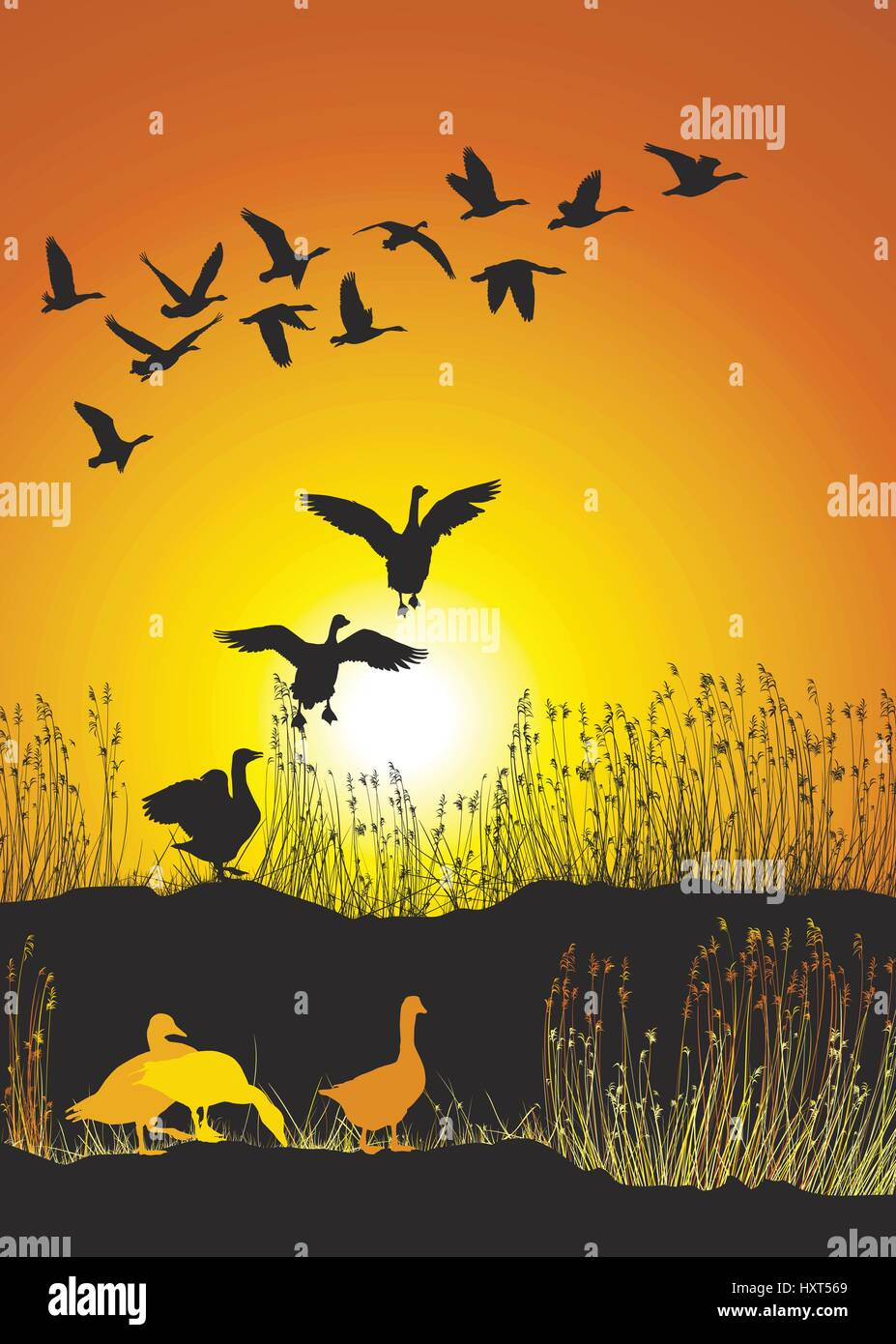 Flying Geese Art Stock Photos & Flying Geese Art Stock Images - Alamy