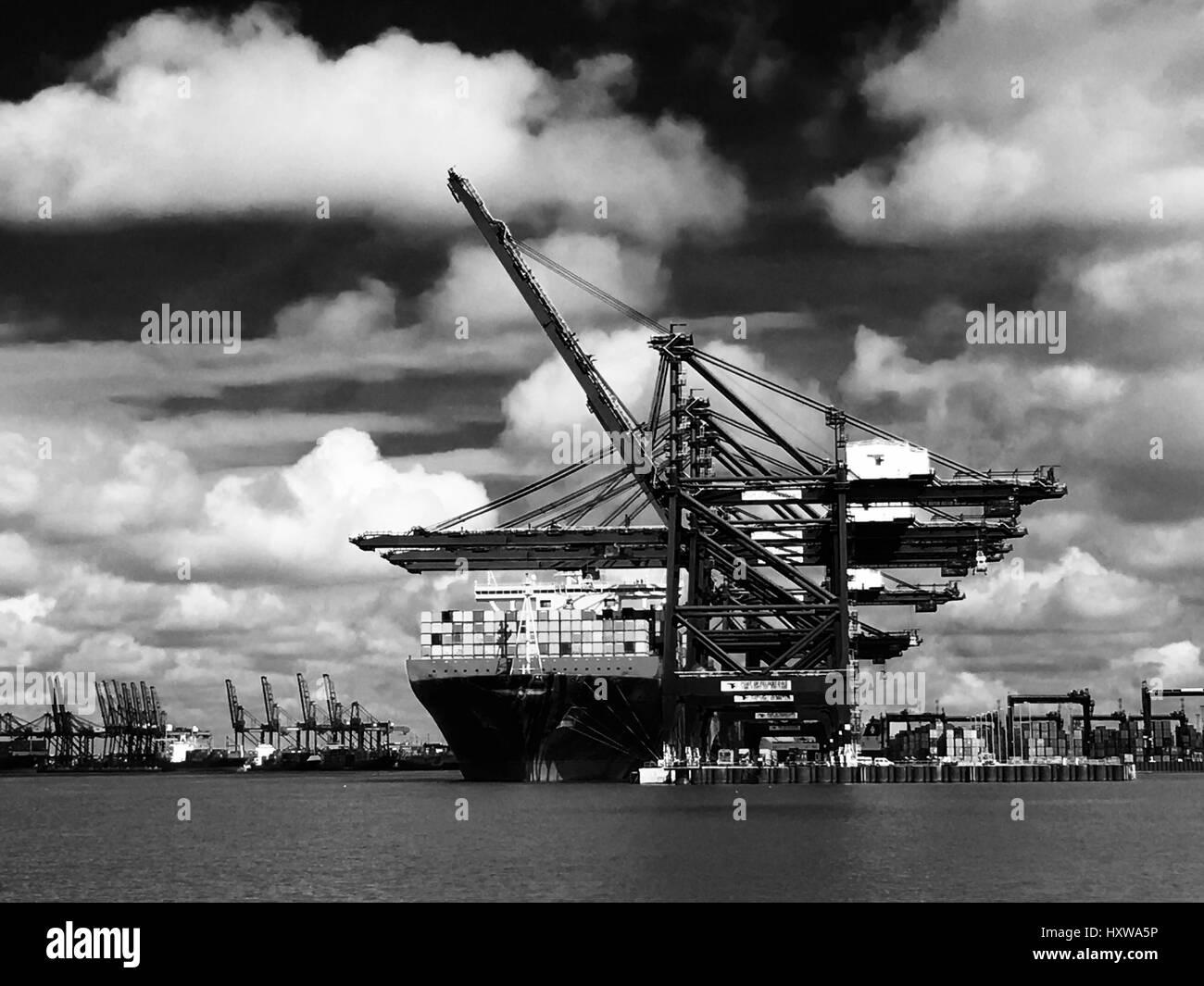 Port of Felixstowe - Stock Image