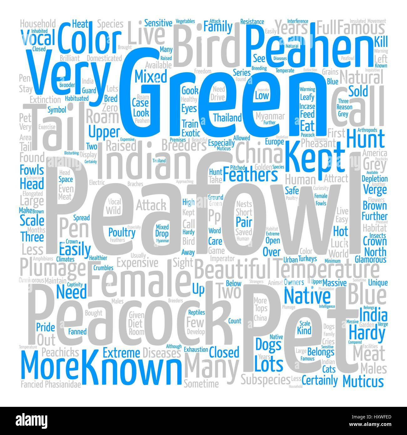 Peafowl Word Cloud Concept Text Background - Stock Image