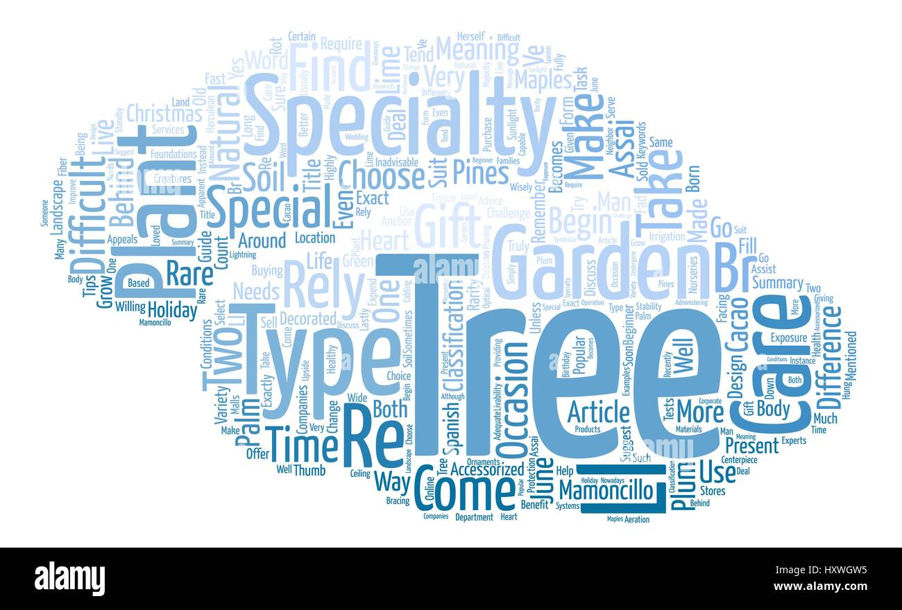 rebuild your credit Word Cloud Concept Text Background Stock Vector