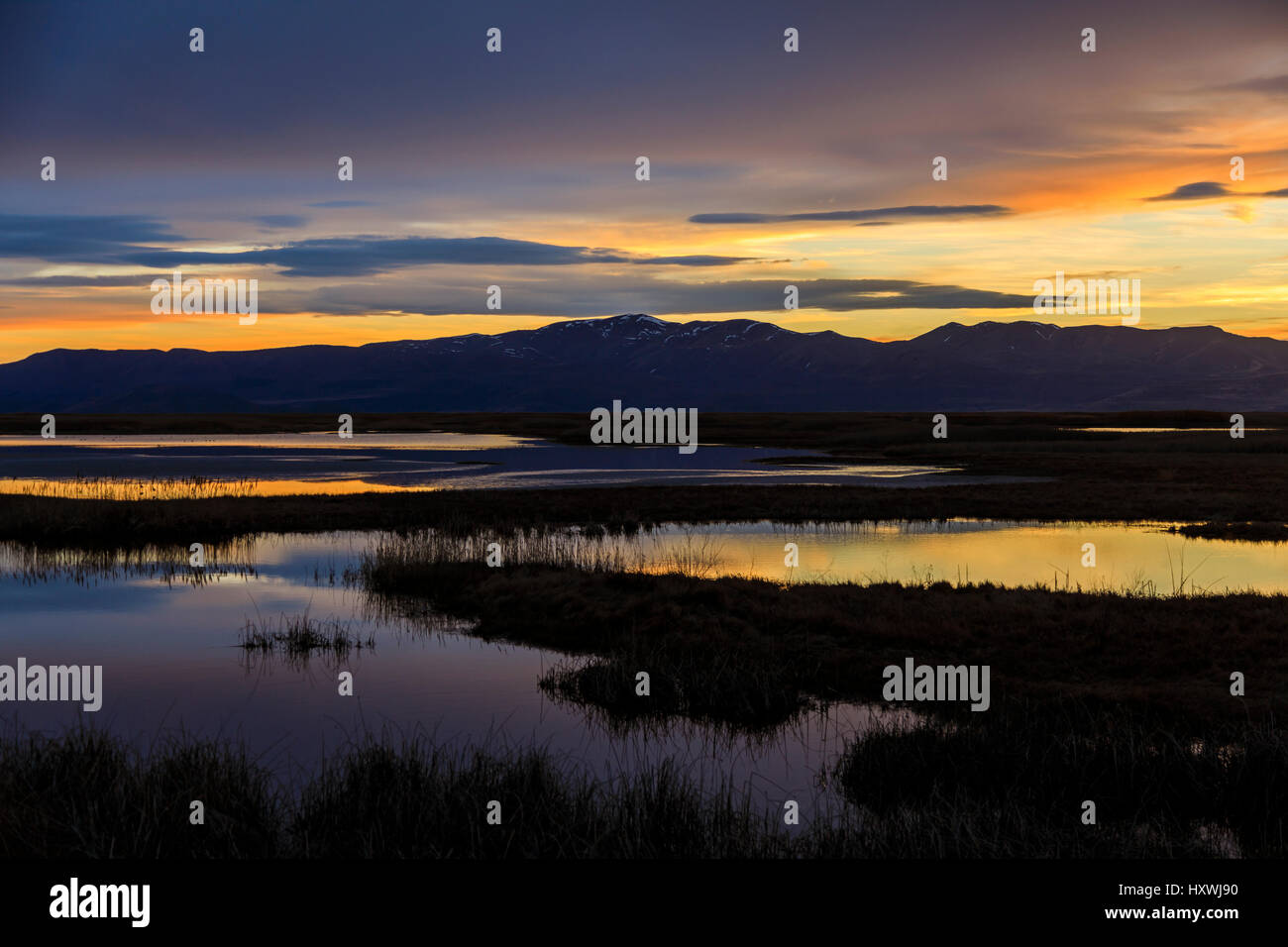The afterglow of the setting sun creates pastel colors over the waters of the Bear River Migratory Bird Refuge west - Stock Image