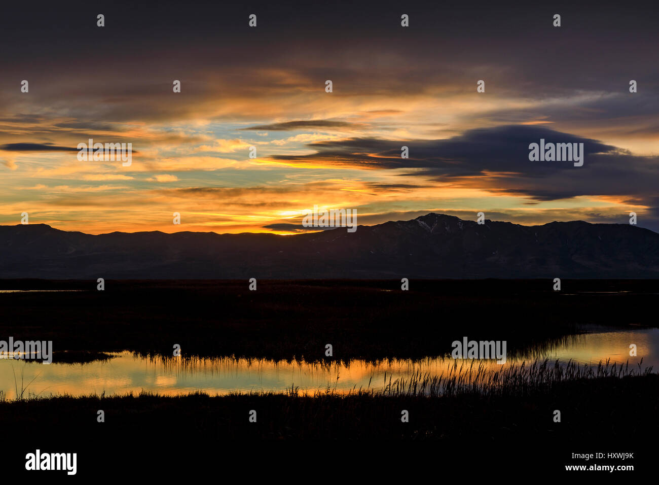The sun sets over the Promontory Mountains casting a golden light on the clouds and reflecting on the water at Bear - Stock Image