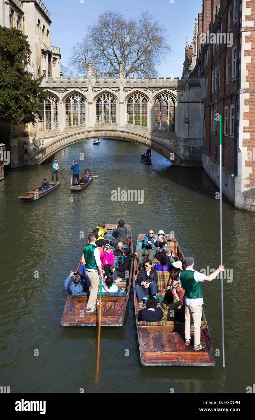 Cambridge Punting on the River Cam at Bridge of Sighs, St Johns College Cambridge University, Cambridge UK - Stock Image