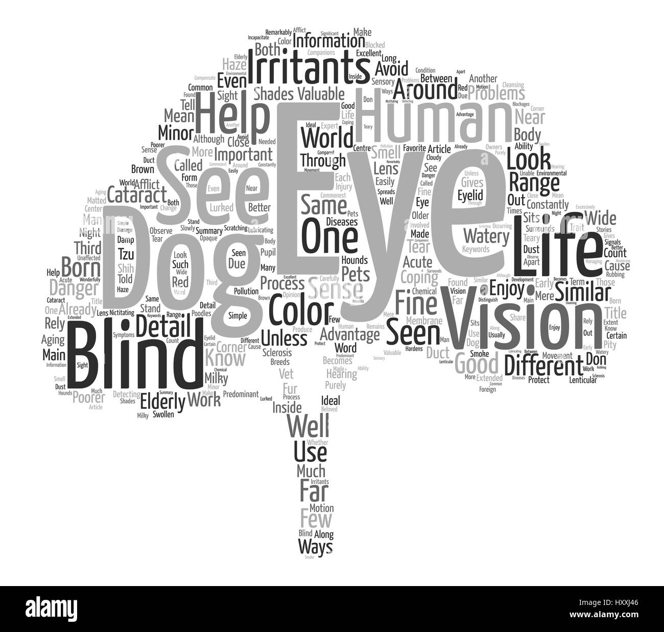Through the Eyes of Your Dog Word Cloud Concept Text Background - Stock Image