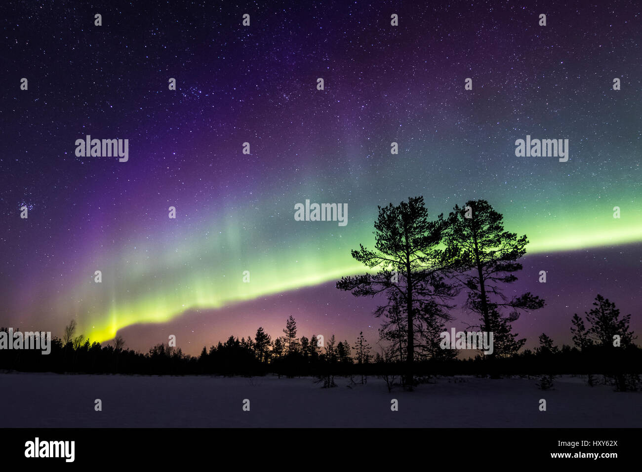 Aurora over a Finnish mire - Stock Image
