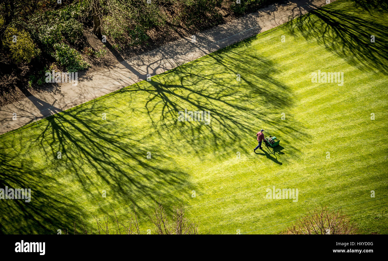 Aerial view of gardener cutting grass with petrol mower. - Stock Image