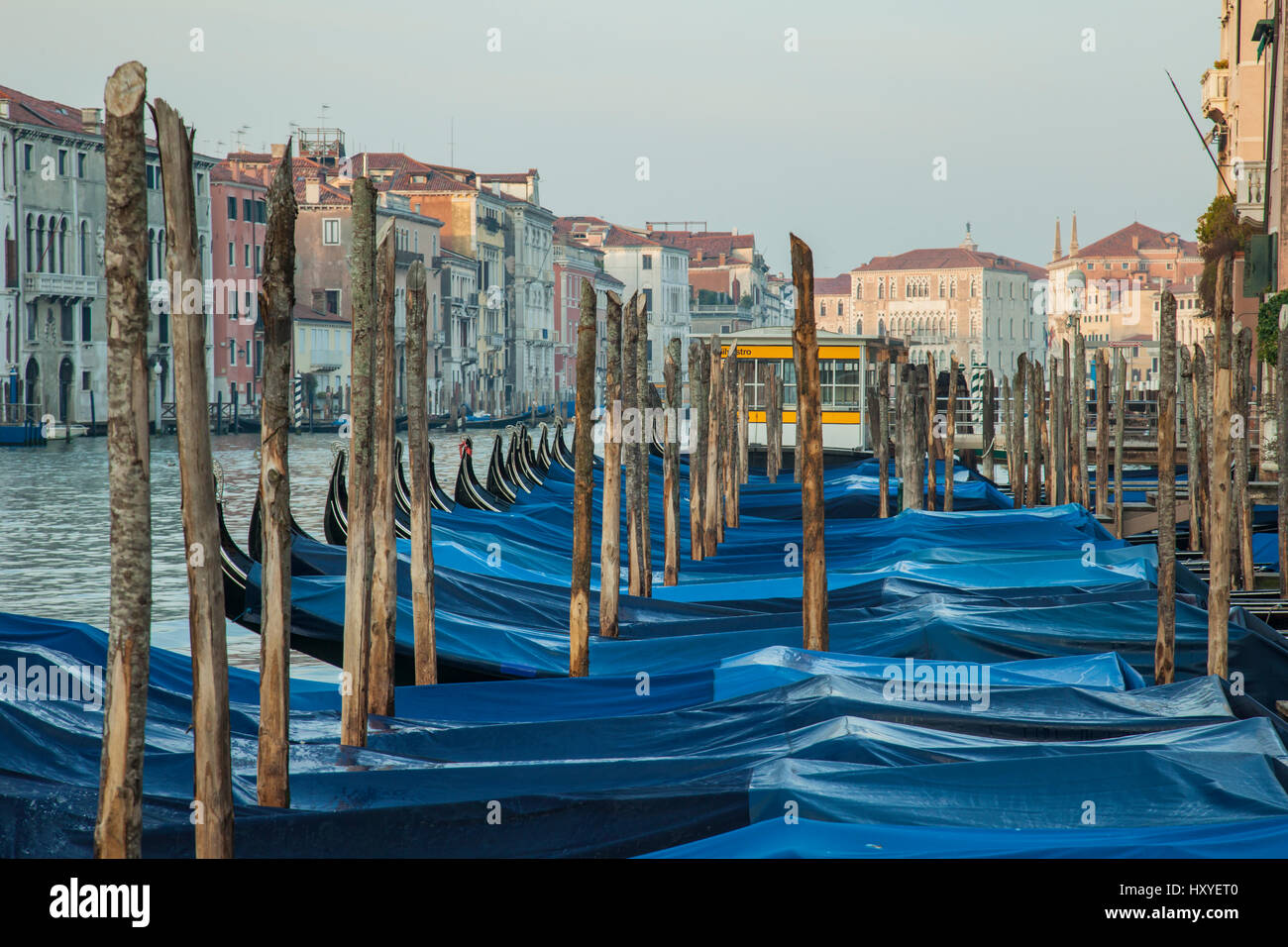 Gondolas moored on Grand Canal, Venice, Italy. Early morning in spring. Stock Photo