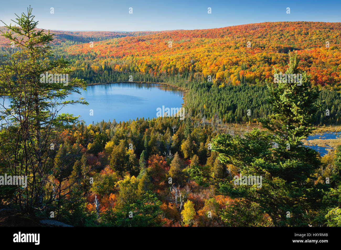 Lake Oberg in northern Minnesota surrounded by blazing autumn color - Stock Image