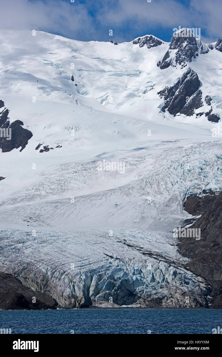 Schrader Glacier in Wilson Harbour, South Georgia. January 2015. - Stock Image
