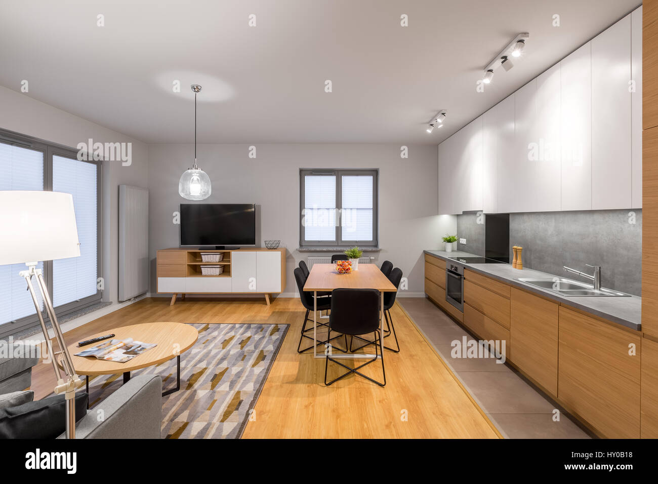Multifunctional Modern Loft Apartment With Kitchen Dining Area Tv Living Room And Hardwood Floor