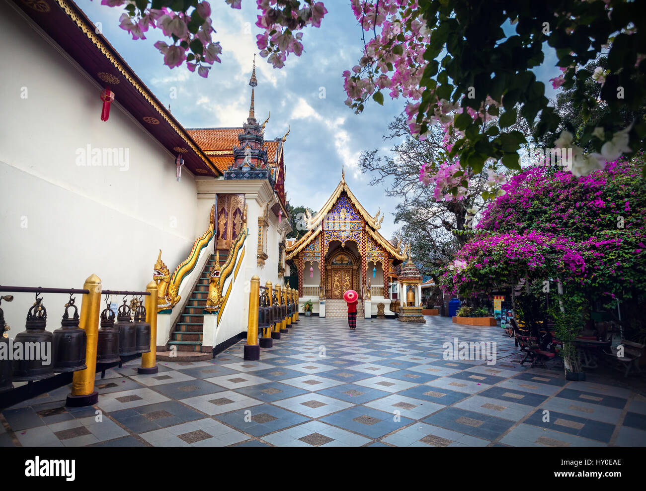 Woman tourist with red traditional Thai umbrella near Pagoda and blooming tree with pink flowers at Wat Doi Suthep - Stock Image