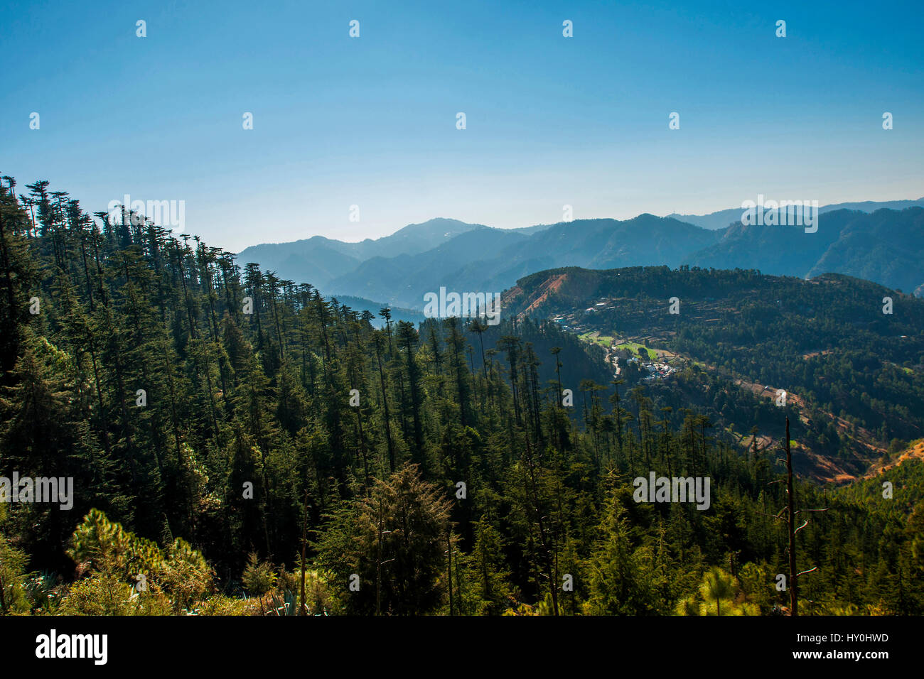 Indian Himalayan mountains, mashobra, himachal pradesh, india, asia - Stock Image