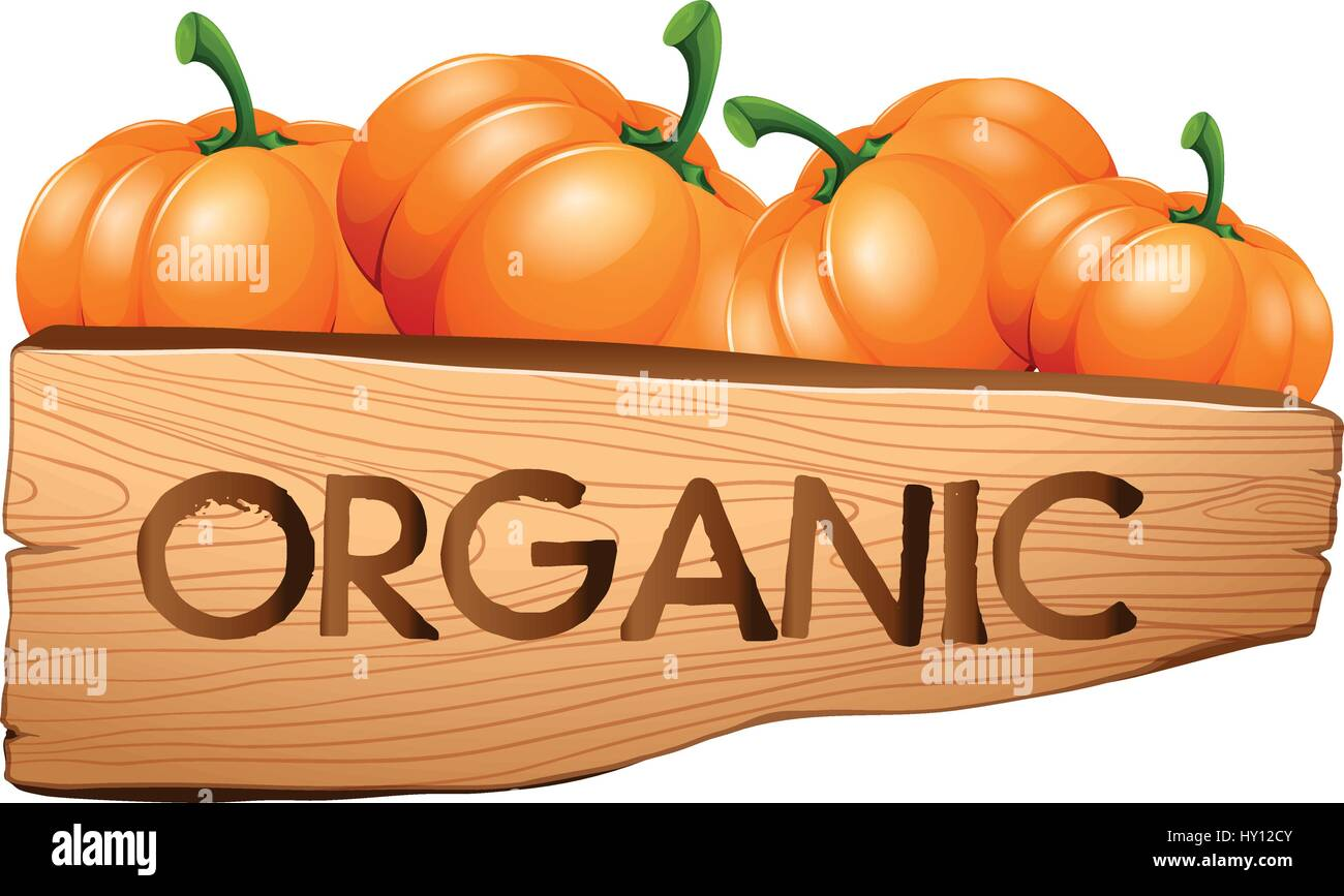 Organic sign with pumpkins illustration - Stock Vector