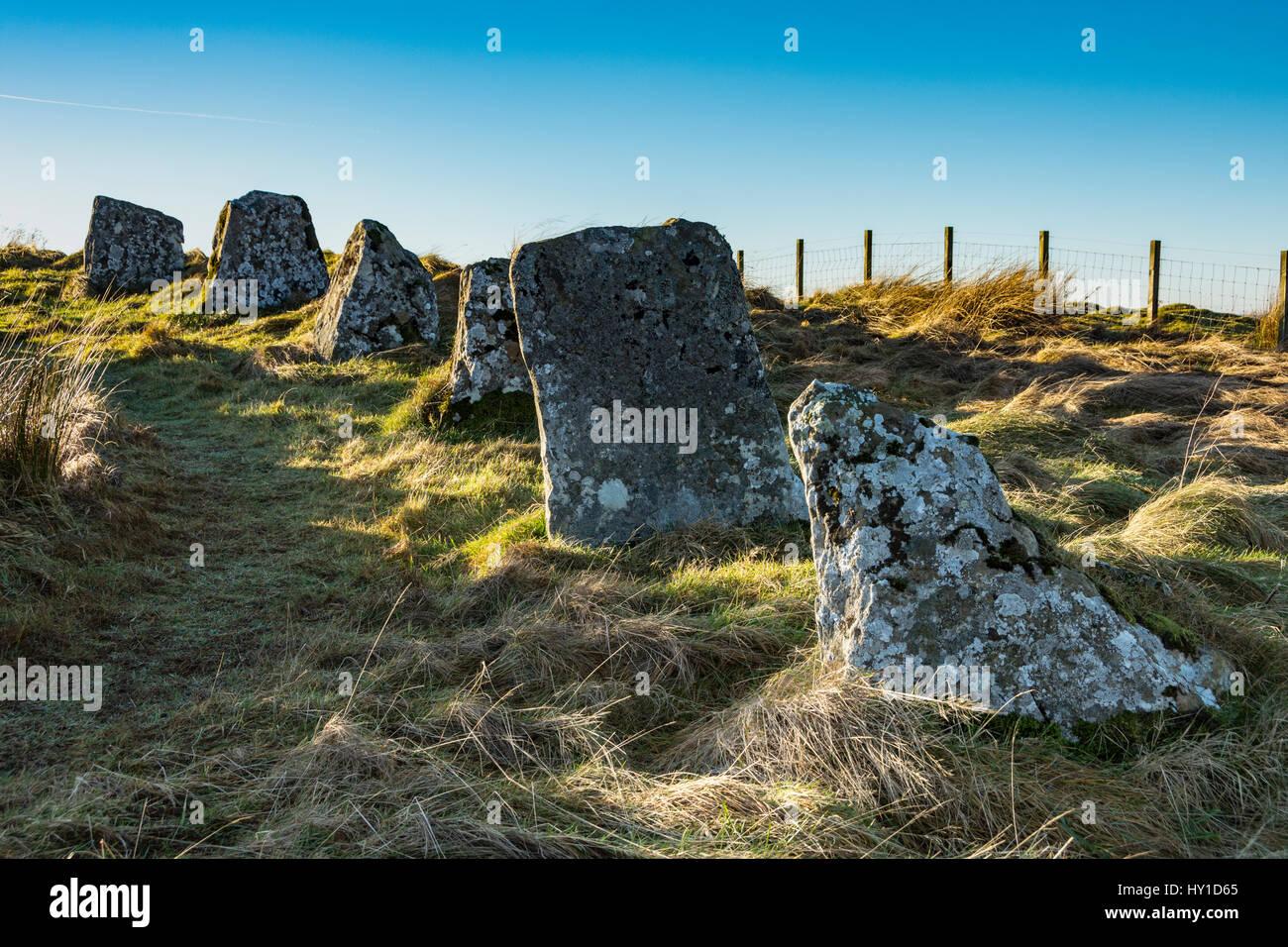The Achavanich Standing Stones, near Lybster, Caithness, Scotland, UK - Stock Image