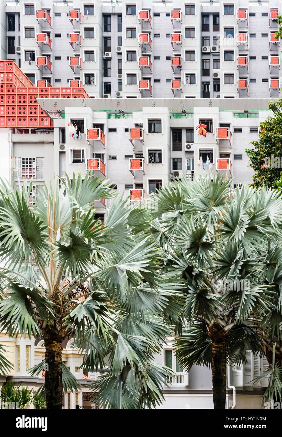Singapore high-rise living at Selegie House along Selagie Rd, Singapore - Stock Image