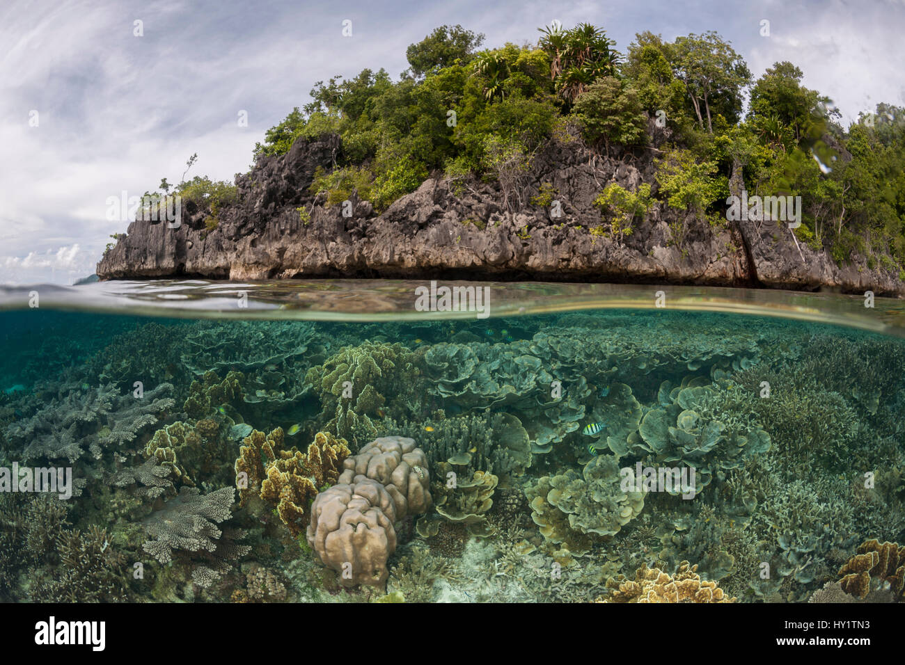 Split level of coral reef and a tropical island. Raja Ampat, West Papua, Indonesia, February 2012. - Stock Image