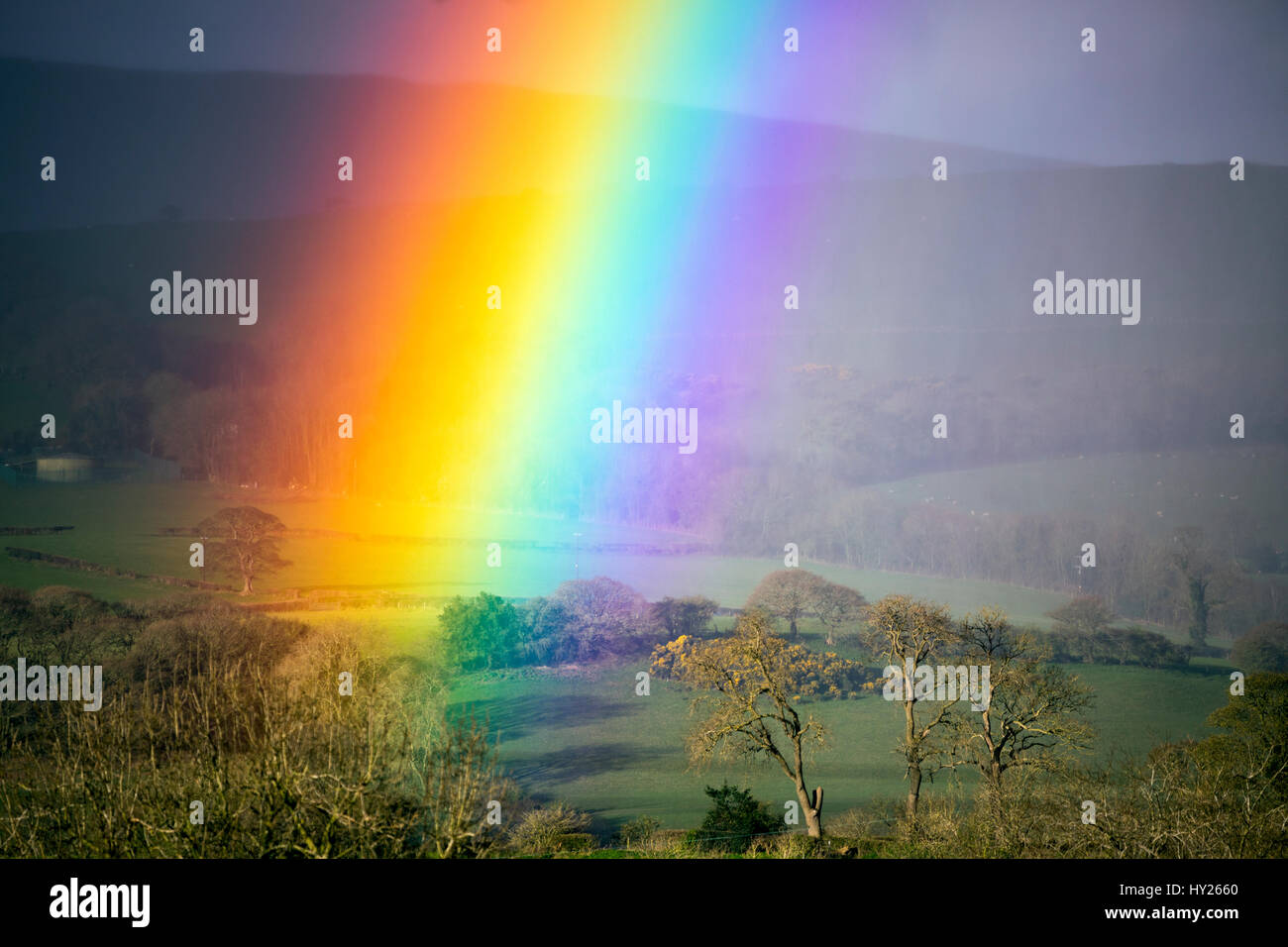 Spectacular rainbow over rural Flintshire in North Wales as rain clearing over the Clwydian Hills creates the meteorological - Stock Image