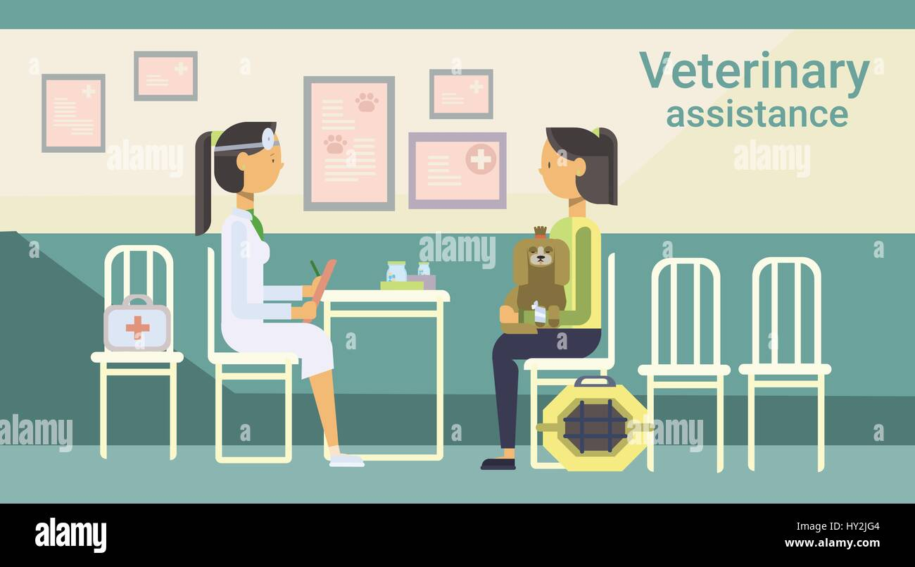 Medical Doctor Veterinarian Cure Animal In Clinic Of Veterinary Assistance - Stock Vector
