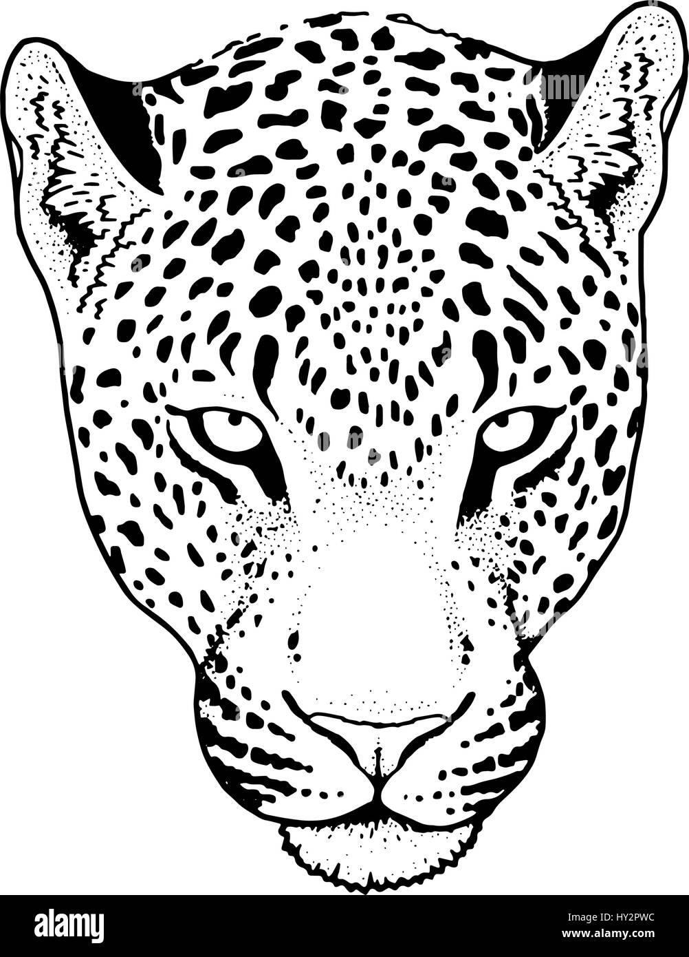 illustration jaguar stock photos illustration jaguar stock images Jaguar XK150 leopard face tattoo vector illustration print stock image