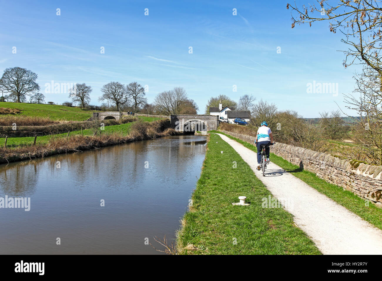 A male cyclist on the towpath of the Caldon branch of the Trent and Mersey canal at Hazelhurst locks Denford Staffordshire - Stock Image