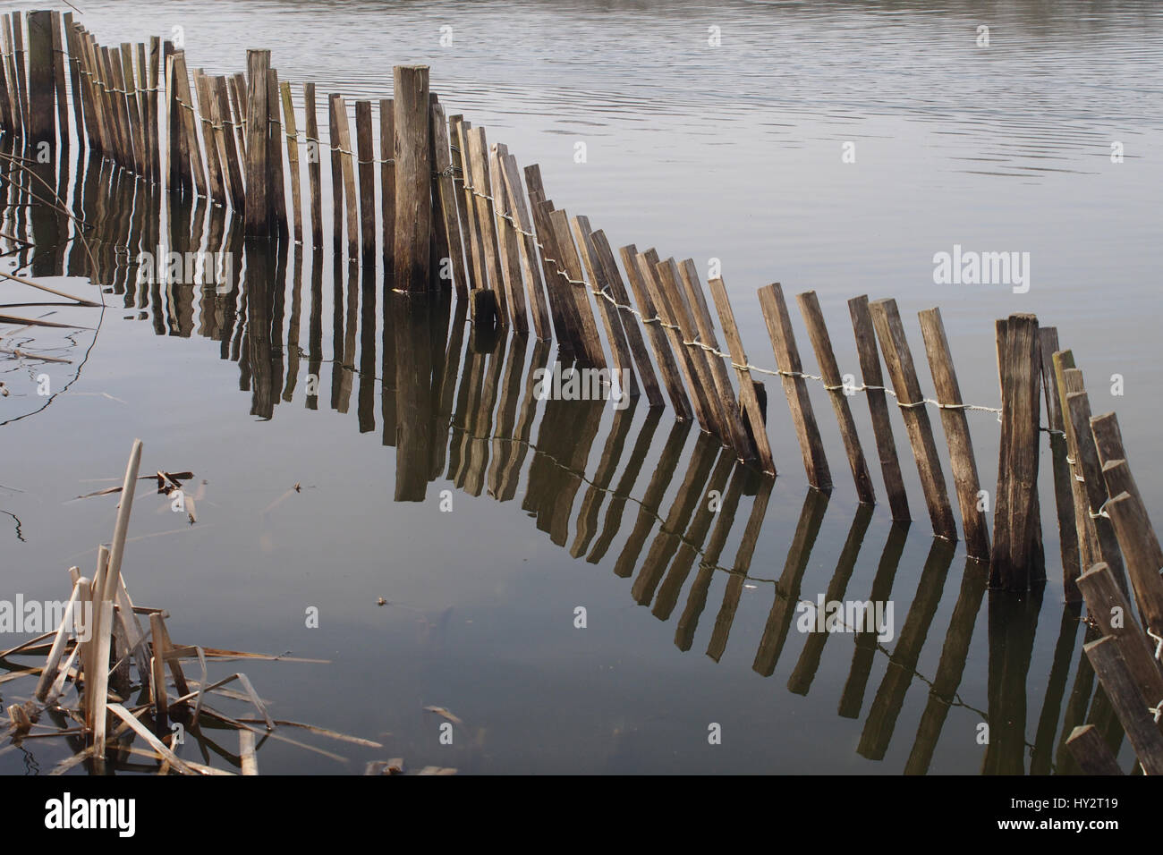 Sunken fence at the edge of a lake Stock Photo