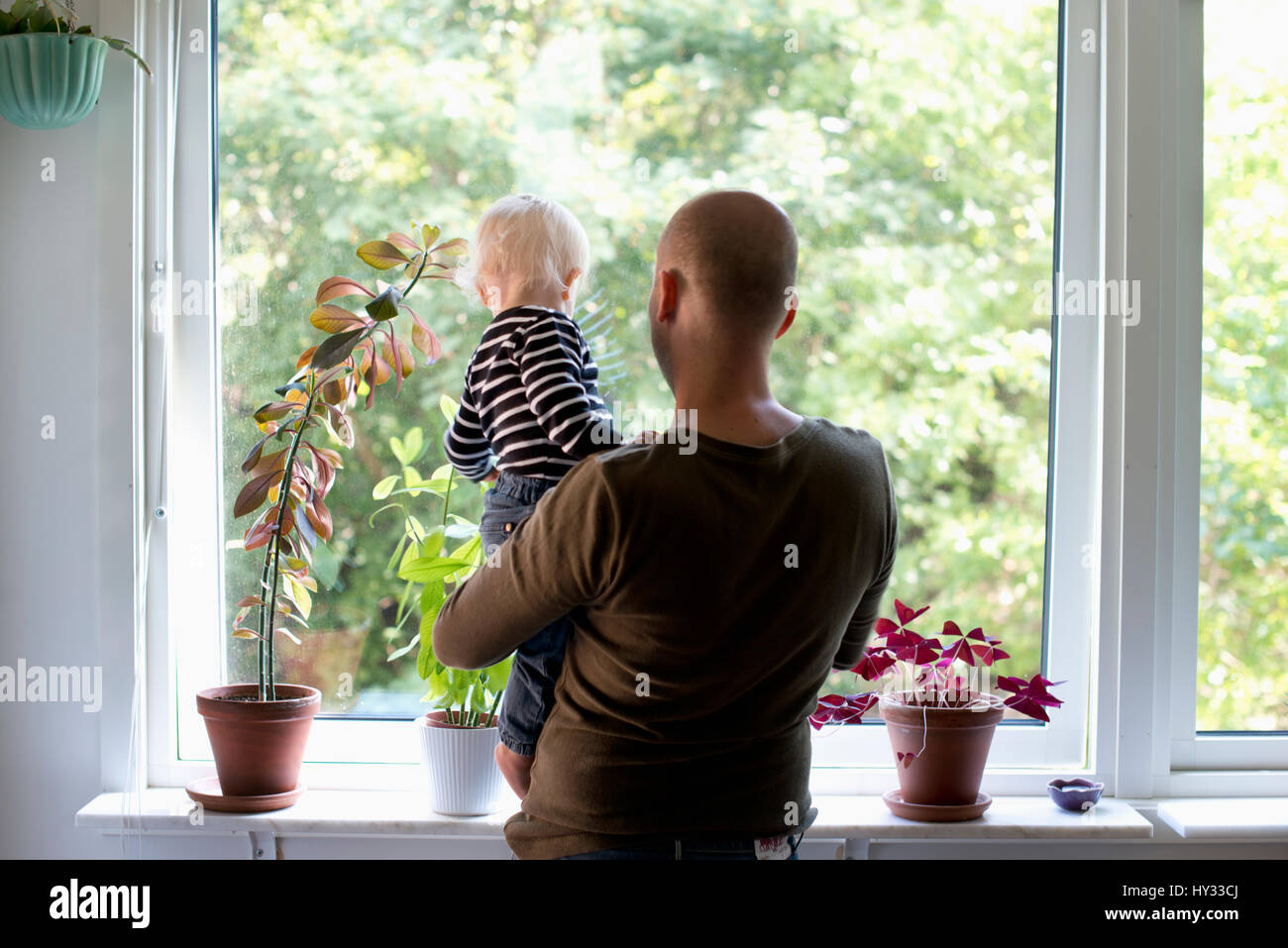 Sweden, Stay at home dad holding son (12-17 months) while looking through window - Stock Image
