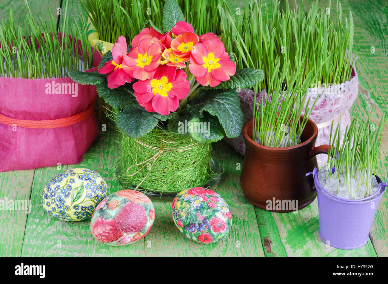 Potted plants and Easter eggs - Stock Image